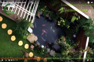 Thi công bể cá koi sân vườn